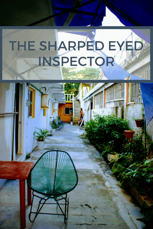 The Sharped Eyed Inspector - Bargaining for backpackers - Only Once Today