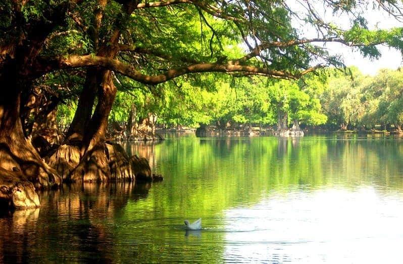 Camecuaro Lake Mexico