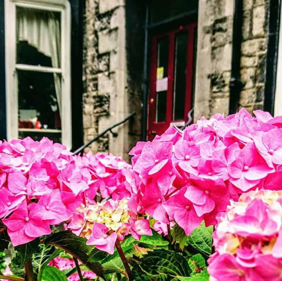 Lyndhurst - UK - Lesbian owned accommodation in Europe
