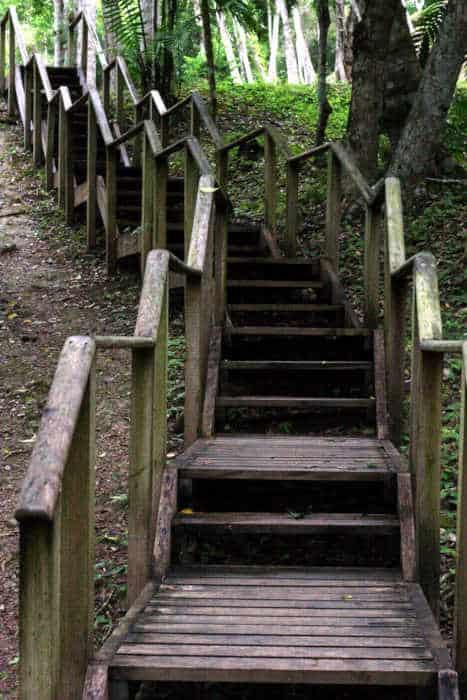 Wooden Stairs at Yaxha Guatemala