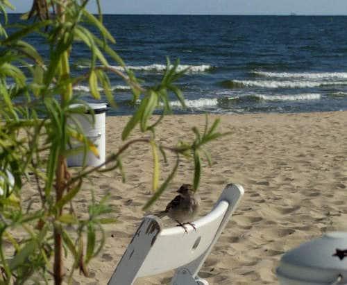 3 days in Gdansk - Sopot Beach