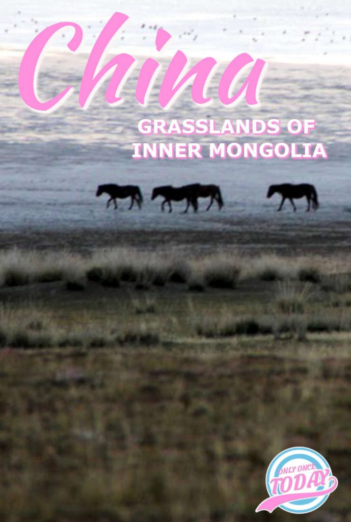Grasslands of inner Mongolia