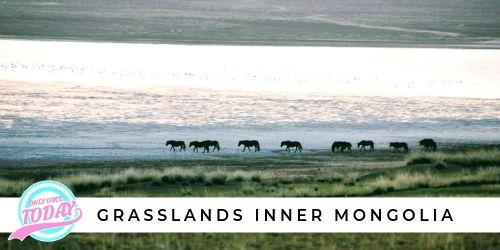 Grasslands Inner Mongolia