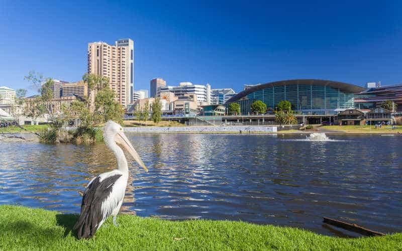 Feast Festival Adelaide - LGBTQ Festival - South Australia - Australia